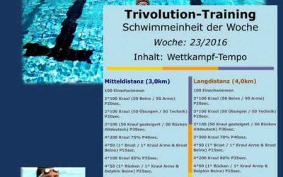 Schwimmtrainingsplan – Woche 23