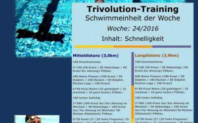 Schwimmtrainingsplan – Woche 24